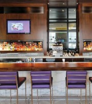 Hyatt Atlanta Midtown - Bar Juniper